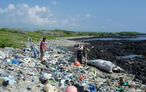Is Plastic Ruining The Earth?