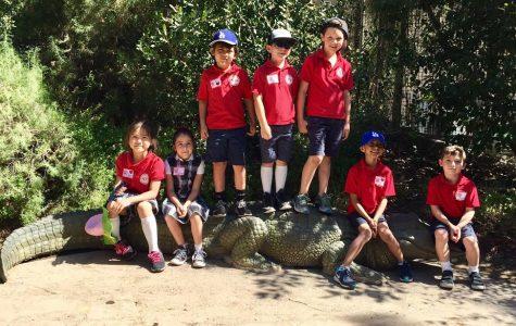 1st Grade Field Trip to LA Zoo