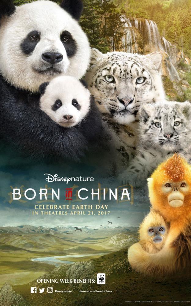 Born+In+China