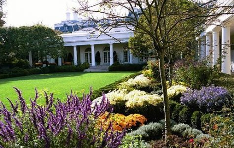 11 Year Old Kid Gets to Mow the White House Lawn