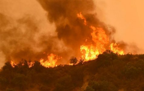 Recent Fires in California