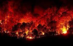 Recent California Fires