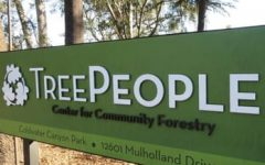4th Grade Field Trip to Tree People