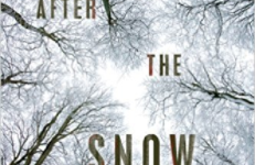 After the Snow by S.D Crokett