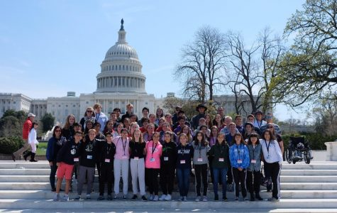 7th Grader Thoughts on 8th Grade in Washington D.C.