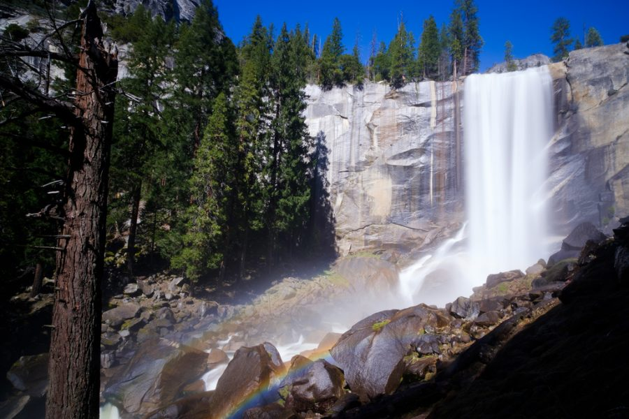 Out and About- Yosemite!