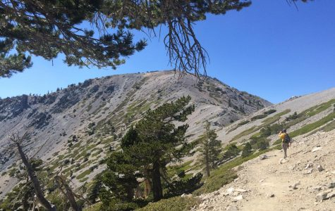Seventh Grade Field Trip to Mount Baldy