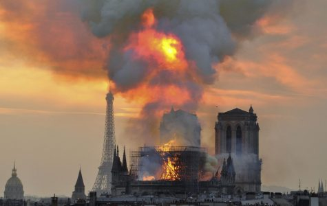 Notre Dame Burns Down